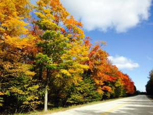 All Roads Point North... to Door County!