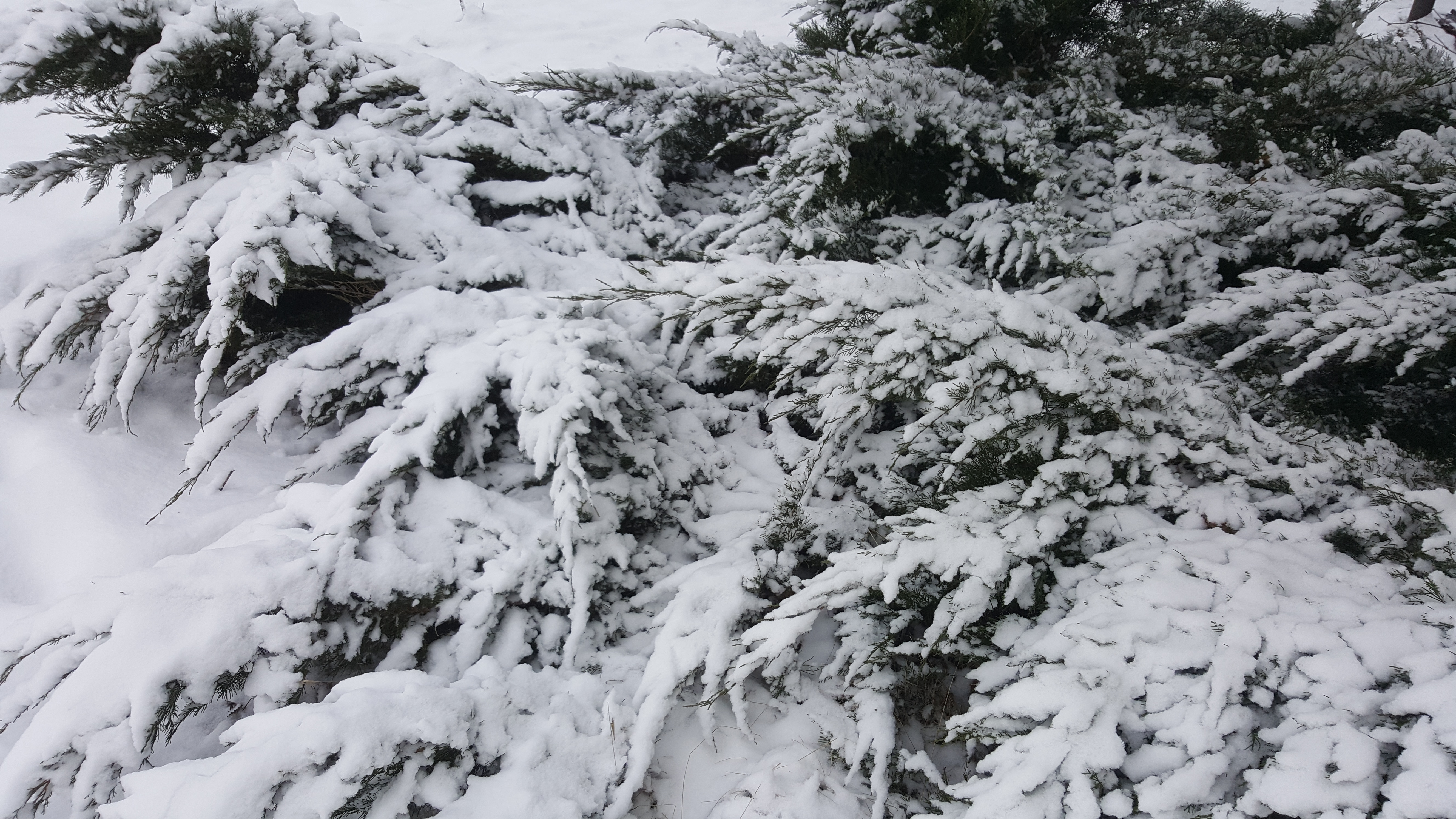 Winter Lodging Specials & Packages in Door County WI 2017 18